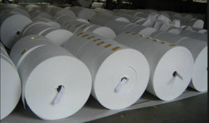 Fiberglass Thermal Insulator in Roll pictures & photos