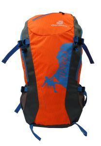 Waterproof Outdoor Sports Travel School Hytration Promotion Light Backpack Bag pictures & photos