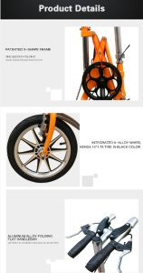 14 Inch Foldable Mountain Bike pictures & photos