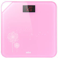 Tempered Glass Body Scale pictures & photos