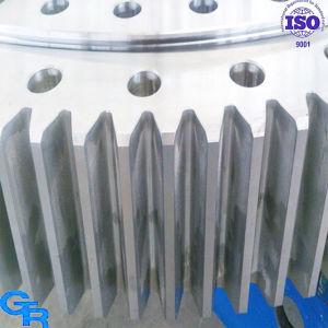 Kato Tadano Z300 Z200 Z500 Z600 Crane Slewing Bearing pictures & photos