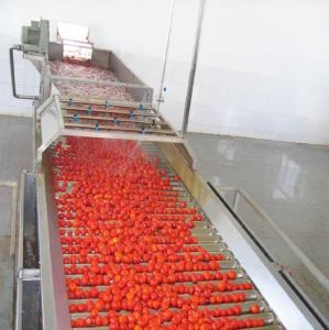 2-20TPH tomato ketchup manufacturing euqipment / tomato sauce processing plant pictures & photos