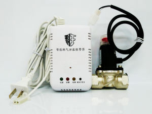 Household Intellegent Combustible Gas Detector with Shutoff Valve Dn20 pictures & photos