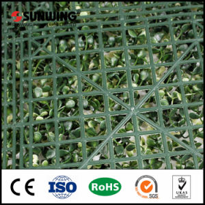 50 X50cm UV Rated Artificial Fence Hedge Willow for Decor pictures & photos