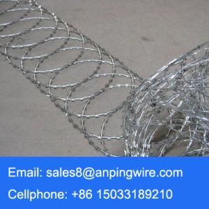 550mm Diameter Galvanized Flat Wrap Concertina Razor Wire pictures & photos
