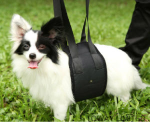 Nylon Hurt Dog Care Bandages Pull Help Mesh Dog Belt pictures & photos