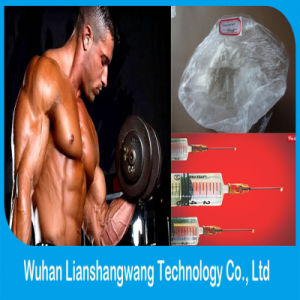 Top Quality Testosteron Blend Weight Loss Homebrew Steroids Sustanon 250 pictures & photos