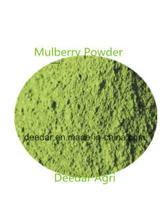 Mulberry Powder pictures & photos