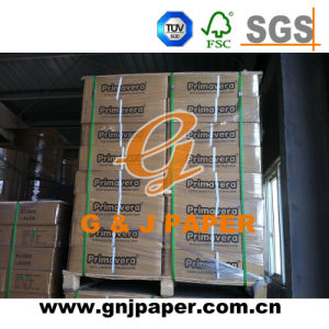 Hot Sale Top Quality 100% Pulp Woodfree Printing Paper pictures & photos