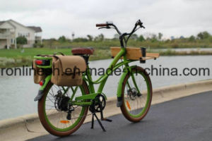 250W/500W Step Through Electric Delivery Bicycle/Delivery Bike/E Cargo Bike/Cargo Pedelec/Transportation E Bike/Electric City Bike Ce pictures & photos