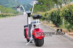 Best Quality Low Price Citycoco 2 Wheel Electric Scooter with Double Seat pictures & photos