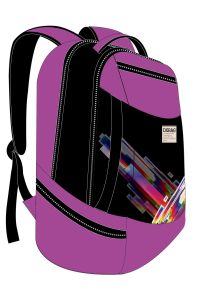 New Design Fashion School Backpack Travel Sports Bags pictures & photos