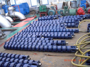 Submersible Deepwell Pump pictures & photos