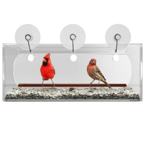 Unbreakable Clear Acrylic Window Bird Feeder pictures & photos