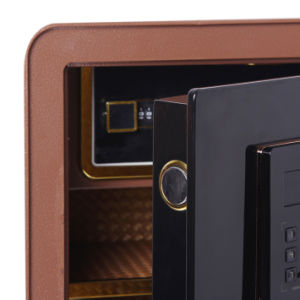 Security Home Safe Box with Digital Lock-Zhiya Series Fdx a/D 45 pictures & photos