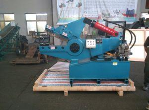 Shear Hydraulic Shear Hydraulic Cutting Machine Metal Shear Cutting Metal Machine (Q08-100) pictures & photos