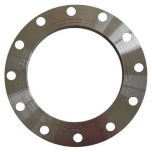 Manufacturer Supply Custom Forging Stainless Steel Flange pictures & photos