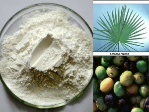 Saw Palmetto Extract for Food Supplement and Cosmetics pictures & photos
