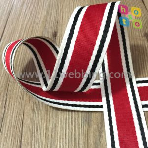 Color Stripe Polyester Webbing for Bag and Garment Accessories pictures & photos