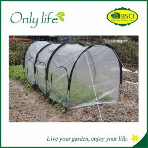 Onlylife PE Tunnel Greenhouse Plant Cover pictures & photos