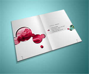 Offset Printing Custom Softcover Pamphlet Printing Brochure Printing pictures & photos
