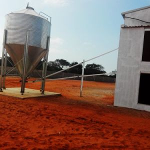 Steel Frame Chicken House for Broilers with Automatic Equipment pictures & photos
