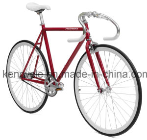700c Hot Sale Cheap Single Speed Fixed Gear Bike Bicycles Sy-Fx70014 pictures & photos