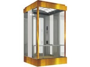 Semi-Circular/Square/ Diamond Shaped Panoramic, Sightseeing Elevator/Lift pictures & photos