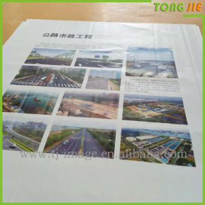 Street Advertising PVC Vinyl Star Flex Banner Printing pictures & photos