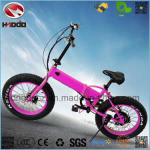 Wholesale Cheap 250W Fat Tire Electric Folding Bicycle for Girl pictures & photos