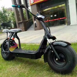 China Citycoco Dirt Bike 2 Wheel Electric Motorcycle Fat Tire
