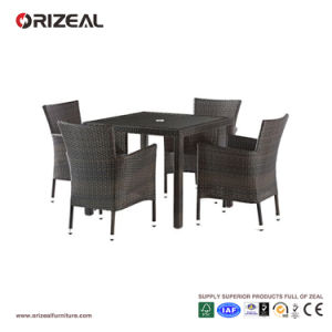 Outdoor Rattan 4-Seater Dining Set Oz-Or063 pictures & photos