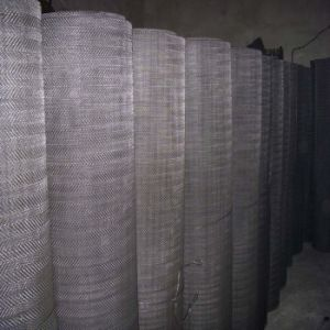 Black Wire Cloth/Black Wire Mesh/Black Wire Mesh Cloth pictures & photos