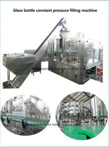 Automatic 330ml 440ml 500ml 750ml Beer Glass Bottle Filler Capper Monobloc Filling Bottling Machine Production Line pictures & photos