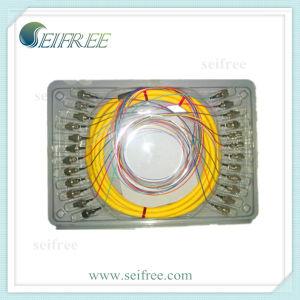 24 Core FC Fanout Fiber Optic Patch Cord Cable pictures & photos