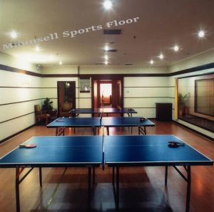 High Quality Cheap Indoor PVC Sports Roll Flooring for Table Tennis pictures & photos