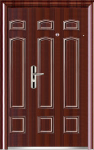 Double Leaf Exterior Door (WX-S-157) pictures & photos