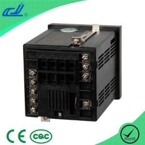Pid Dual Row 3-Ledtemperature Controller (XMTD-618) pictures & photos