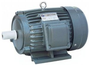 Y 3 Induction Electric Motor (CE Approved 80-355frame)