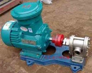 2cy7.5/2.5 Fuel Oil Gear Pump pictures & photos
