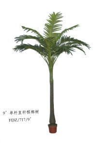 Artificial Plants and Flowers of Coco Palm 6m pictures & photos