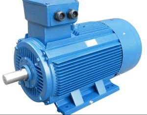 Dual Voltage 220/380V 45kw Electrical AC Motor pictures & photos