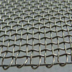 Stainless Steel Barbecue Wire Mesh for Roast pictures & photos