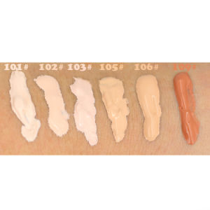 6 Colors Nude Makeup Face Foundation Liquid Cover Concealer Fo0347 pictures & photos