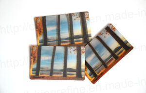 Lenticular Magnetic Card (3D110) pictures & photos