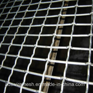 All Surface Treament of Crimped Wire Mesh pictures & photos