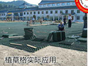 Plastic Grass Paver Grille Grid Landscape Grille Car Parking Grille pictures & photos