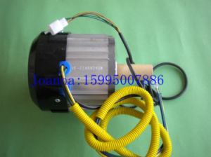 Tricycle Motor 850W