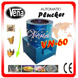 Fully Automatic Chicken Plucker for Chicken Feather Remover Vn-60 pictures & photos