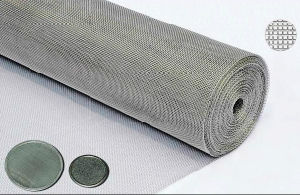 Stainless Steel Woven Filter Mesh for Filter Discs or Panels pictures & photos